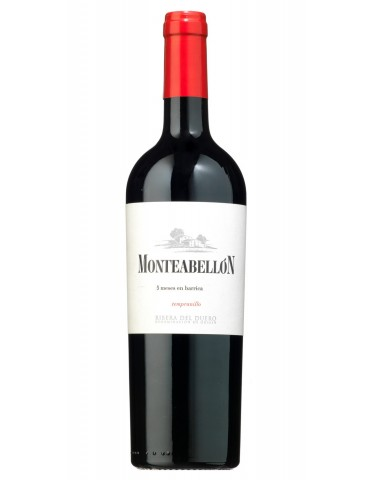 Monteabellón